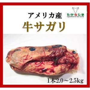 牛サガリ  ハンキングテンダー ブロック アメリカ産 希少部位 US産 サガリ ハラミ チョイス 焼肉 バーベキュー BBQ キャンプ 業務用 フレンチ|takarajima9666