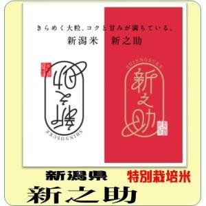 新之助 5kg  平成29年産 白米 送料無料(本州のみ)...