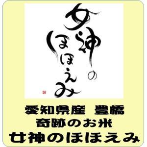 愛知県産 豊橋 女神のほほえみ  平成29年産 白米5kg 送料無料(本州のみ)|takaramai