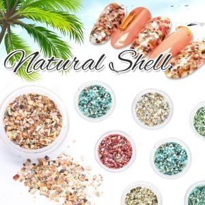 【メール便対応】アースカラー ナチュラルシェル 12色 シェルフレーク クラッシュシェル シェルパーツ 自然の貝|takaranail