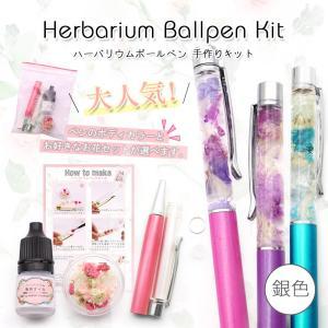 ハーバリウムペン 銀 手作りキット ハーバリウム用ボールペン 【メール便送料無料】 ハーバリウム  ハーバリューム  ハンドメイドペン 手作り|takaranail
