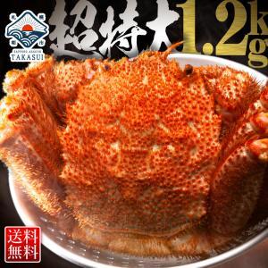 毛ガニ 毛蟹 毛がに かに 蟹 カニ  1.2kg ボイル 姿 訳あり じゃありません 特大 サイズ...