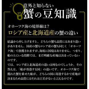 送料無料 カニ 蟹 かに ズワイガニ ずわいがに 姿 超特大 900g〜950g ボイル ギフト ズワイ蟹|takasui|05