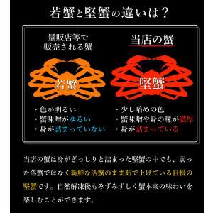 送料無料 カニ 蟹 かに ズワイガニ ずわいがに 姿 超特大 900g〜950g ボイル ギフト ズワイ蟹|takasui|08