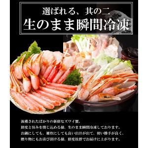 ズワイガニ ポーション ズワイ蟹 かにしゃぶ 1.2kg 生ずわいがに  カット済み|takasui|03