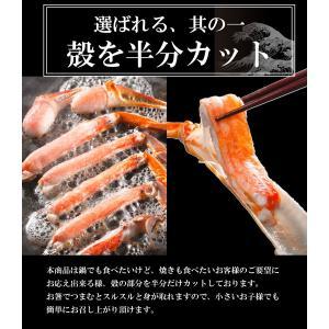 ズワイガニ ポーション ズワイ蟹 かにしゃぶ 1.2kg 生ずわいがに  カット済み|takasui|04