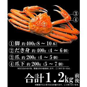 ズワイガニ ポーション ズワイ蟹 かにしゃぶ 1.2kg 生ずわいがに  カット済み|takasui|05