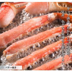 ズワイガニ ポーション ズワイ蟹 かにしゃぶ 1.2kg 生ずわいがに  カット済み|takasui|06