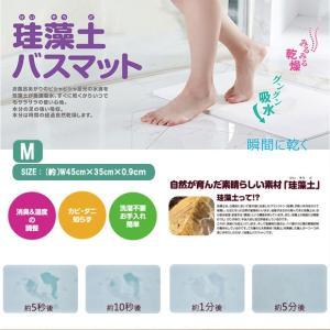 珪藻土バスマット 速乾足拭きマット 数量限定 Mサイズ 45cm*35c*0.9cm 4色 |takayama