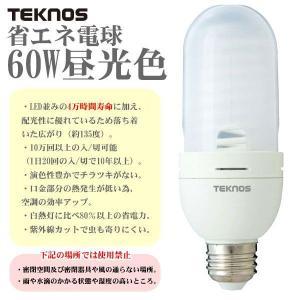 テクノス CCFL電球(昼光色) CCFL60W|takeden-toshi