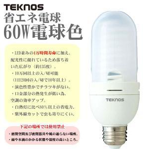 テクノス CCFL電球(電球色) CCFL61Y|takeden-toshi