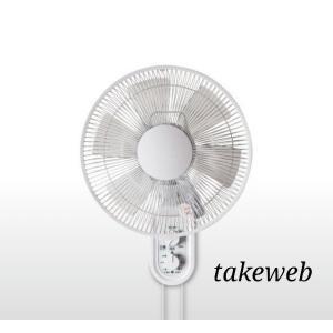 テクノス 30cm壁掛けメカ扇風機 KI-W289|takeden-toshi