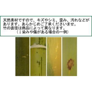 「竹ふみ」京都の天然竹 健康「青竹踏み」 冷え性や頻尿対策にも|takenomise|02