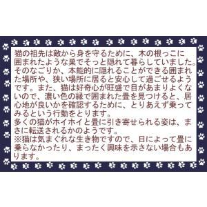 「猫ホイホイ畳(R)」[純国産いぐさ]【畳】猫転送装置〜NHKおはよう日本で紹介♪「猫ほいほい畳」京都なごみ畳【和風】 takenomise 06