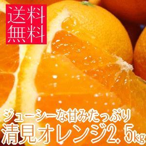 ジューシーな甘みたっぷり清見オレンジ 2.5kg (不揃い)(和歌山県産) takeore