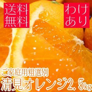 ご家庭用粗選別清見オレンジ 2.5kg(わけあり 訳あり) (規格外 不揃い)(和歌山県産) takeore