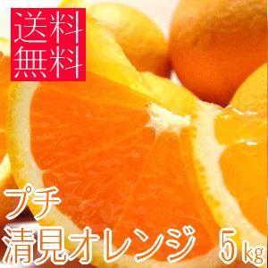 甘み凝縮!!プチ清見オレンジ S&2Sサイズ 5kg (和歌山産)|takeore