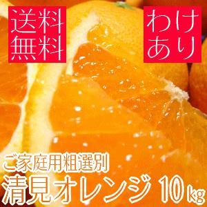 ご家庭用粗選別清見オレンジ 10kg(わけあり 訳あり) (規格外 不揃い)(和歌山県産) takeore