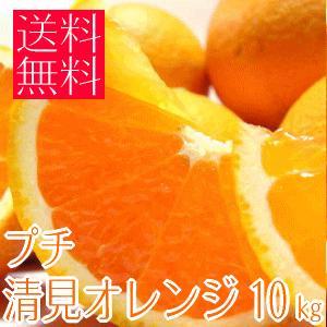 甘み凝縮!!プチ清見オレンジ S&2Sサイズ 10kg (和歌山産)|takeore