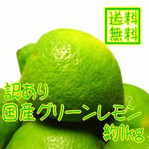 国産(和歌山有田産)グリーンレモン 約1kg(ノーワックス)(防腐剤不使用)(減農薬)