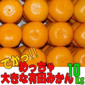 めっちゃ大きな有田みかん 約10kg(送料無料/ギフト)の画像