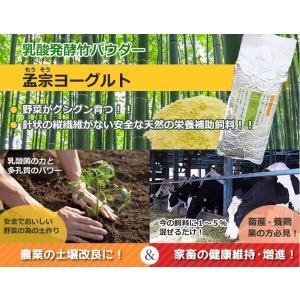 乳酸菌の力で鶏、牛、豚などのサプリメントに!竹飼料 孟宗ヨーグルト1kg(アルミ真空パック) お得な3個セット!|takepanda
