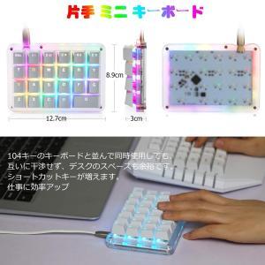 フルプログラム可能 メカニカルキーボード カスタマイズ自在 ゲーミングキーボード 23キー マクロキー RGBバックライト 片手小型キーボー|takes-shop