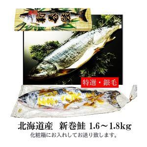 新巻鮭 北海道産 銀毛1本化粧箱入れ(1.6〜1.8kg)