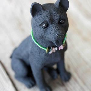 竹炭のペット/柴犬|taketora
