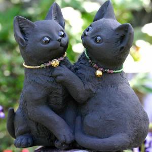竹炭のなかよし猫ちゃん|taketora