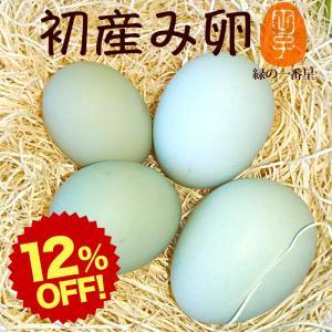 緑の一番星 30個入 卵 クーポン利用で半額 送料無料 緑の一番星(トレイ入) 贈り物にも!雑誌掲載テレビで話題 アローカナ大黄卵鶏が産む薄緑殻 高級栄養タマゴ