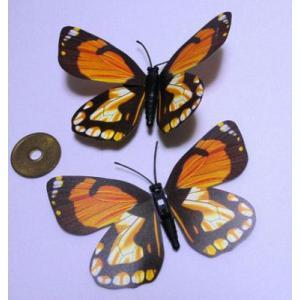 【中国雑貨】 色鮮やかな蝶のマグネット★バタフライマグネット★インテリア小物★【メール便可能】 takouya