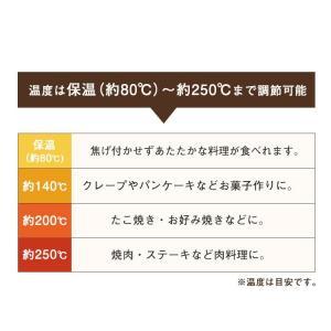 ホットプレート 大型 おしゃれ アイリスオーヤマ 両面ホットプレート DPO-133  折りたたみ コンパクト たこ焼き 焼肉 1人暮らし|takuhaibin|07