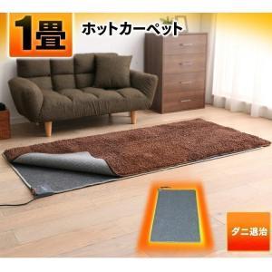 ホットカーペット 1畳 本体 1畳用 ダニ退治機能 折り畳み収納 暖房 暖房器具 TWA-1000BI TEKNOS (D)(あすつく) takuhaibin