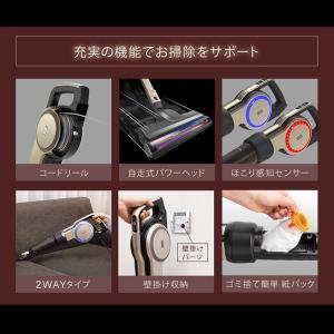 掃除機 クリーナー スティッククリーナー アイリスオーヤマ 軽量 キャニスティッククリーナー KIC-CSP5 キャニスティック(あすつく) takuhaibin 09