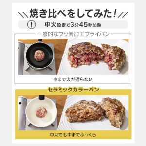 フライパン 焦げ付かない IH対応 セット 14点セット セラミック カラーパン 新生活 H-CC-SE14 セラミックフライパン(16〜26cm)ふた付き アイリスオーヤマ|takuhaibin|07