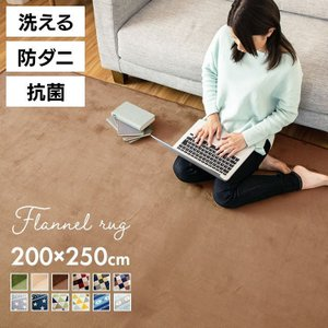 ラグ フランネルラグ 200×250cm 洗える ラグマット 北欧 約3畳 カーペット ホットカーペット対応 床暖房対応 フランネル素材の写真
