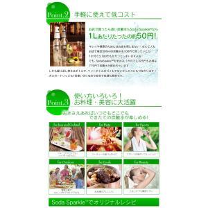 ソーダメーカー 1.0Lボトル スターターキット|takuhaibin|04