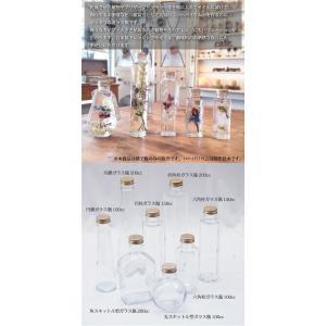 ハーバリウム 六角柱ガラス瓶 100cc 10...の詳細画像2
