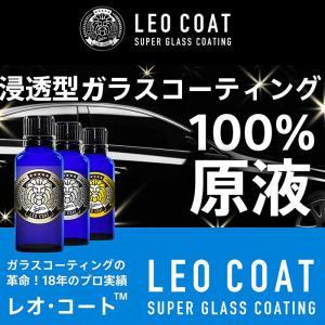 LEO COAT レオコート ガラスコーティングセット 車 バイク コーティングの商品画像 ナビ