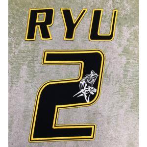 【メール便対応可】オリジナルプレーヤーズ刺繍ワッペン RYU/2 (注:返品・交換不可) tama41shop