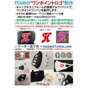 【ご注文前にご連絡下さい】チームワンポイトロゴ刺繍ワッペン☆制作費込み5個セット/オーダー商品|tama41shop