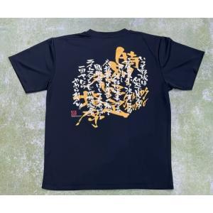ライトスタンド魂ドライTシャツ!|tama41shop