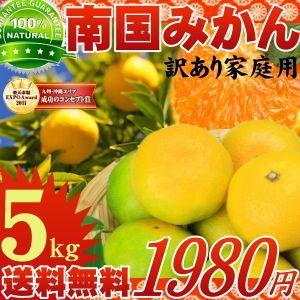 九州南国みかんたっぷり5kg|tamachanshop