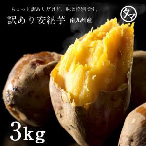 訳あり安納芋 1.6kg (あんのういも)  鹿児島産 サツマイモ さつまいも|tamachanshop