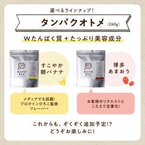 タンパクオトメ 260g プロテイン ホエイ ソイ 女性のための美容専門 葉酸 ビタミン 送料無料|tamachanshop|05