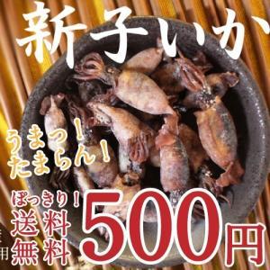 塩茹で干しスルメイカ 80g 防腐剤・着色料・調味料不使用|tamachanshop