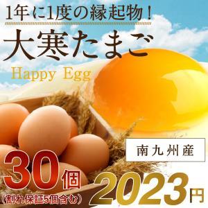 大寒たまご 30個 縁起物 宮崎県 鹿児島県 九州 2019年 風水 大寒 金運UP 生卵 タマゴ 送料無料