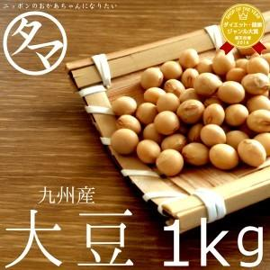 大豆 1kg 九州産(一等級ダイズ) 黄金地大豆 令和元年度産 送料無料
