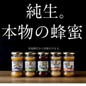 生はちみつ 250g ハロッド養蜂場 生蜂蜜 アボカドハニー 非加熱 ロ―ハニー ハニー ハチミツ 蜂蜜 酵素 メレンゲの気持ち|tamachanshop